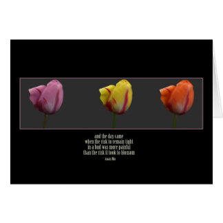 anias_tulips felicitaciones