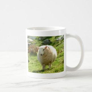 Anillo de las ovejas de Kerry Taza De Café
