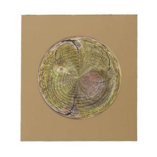 Anillos de árbol en un globo en extracto bloc de notas