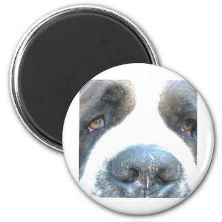Animal 2 Inch Round Magnet