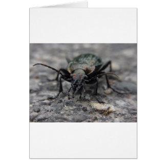 animal-3411 tarjeta de felicitación