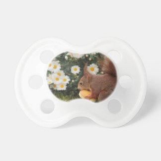 animal-7840-  squirrel pacifier