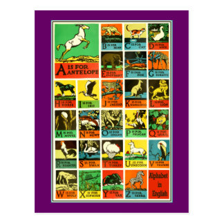 Animal abc alphabet Chart  teachers and learners Postcard