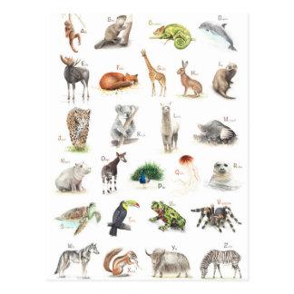 Animal ABC Postcard