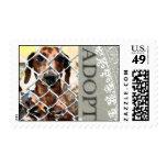 Animal Adoption Stamp