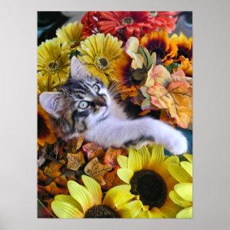Animal adorable del bebé, gatito de la naturaleza, impresiones
