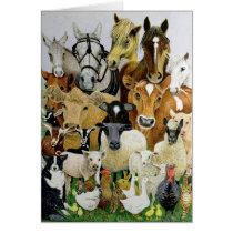 Animal Allsorts