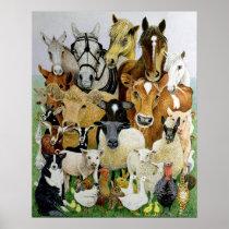 Animal Allsorts Poster