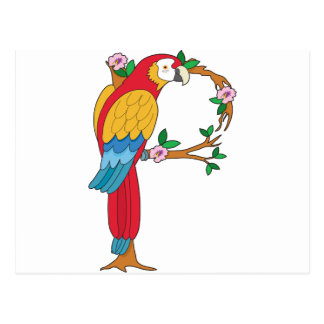 Animal Alphabet Parrot Postcard