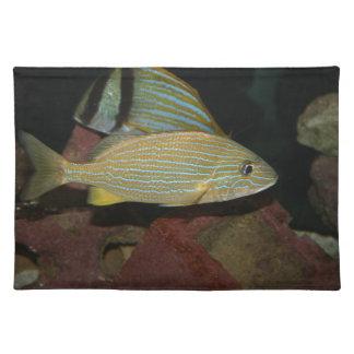 animal amarillo rayado azul del agua salada de los manteles individuales