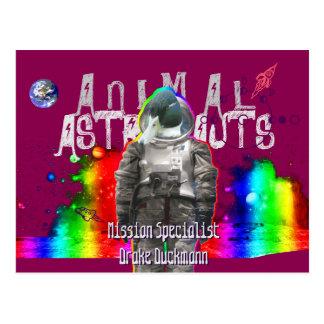 Animal Astronauts Duck Postcard
