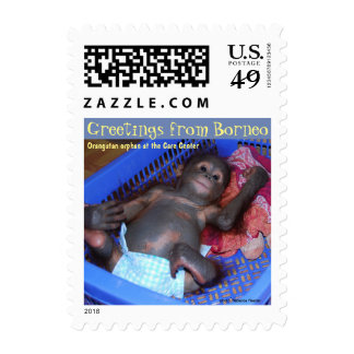 Animal Baby Orangutan in Borneo Postage