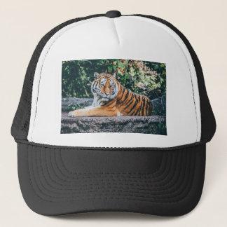 Animal Big Cat Safari Tiger Wild Cat Wildlife Zoo Trucker Hat