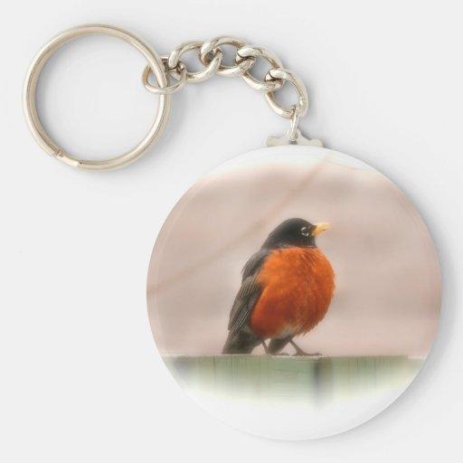 Animal Bird American Robin Basic Round Button Keychain