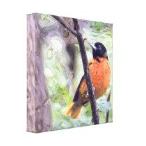 Animal Bird Baltimore Oriole Canvas Print