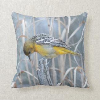 Animal Bird Baltimore Oriole Throw Pillow