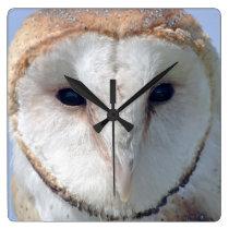 Animal Bird Barn Owl Square Wall Clock