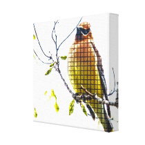 Animal Bird Cedar Waxwing Canvas Print