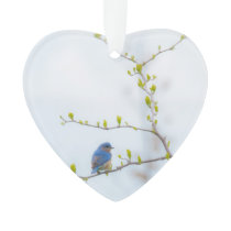 Animal Bird Eastern Bluebird Ornament