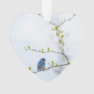 Animal Bird Eastern Bluebird Ornament