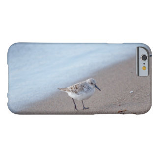 Animal Bird Sanderling Barely There iPhone 6 Case