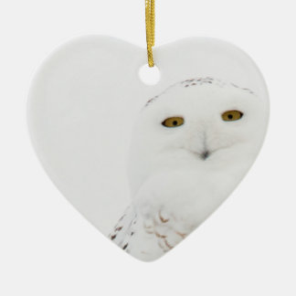 Animal Bird Snowy Owl Looking at Me Ceramic Ornament