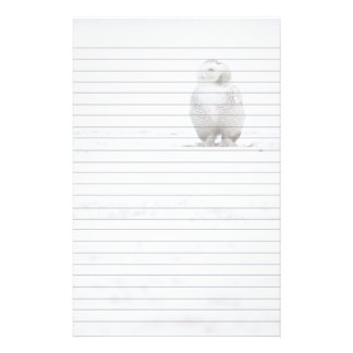 Animal Bird Snowy Owl Looking at Me Stationery