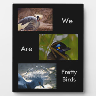 Animal Bird Tropical Plaque