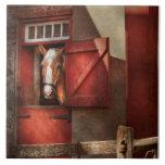 Animal - caballo - casa de Calvins Teja Ceramica
