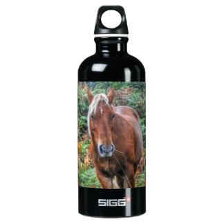 animal Caballo-temático del Equino-amante