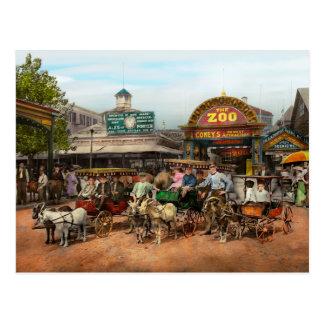 Animal - cabras - Coney Island NY - el niño monta Postal