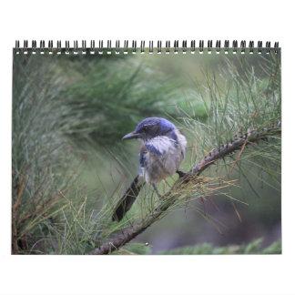 Animal Calendar