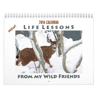 Animal Calendar 2016 - New Life Lessons