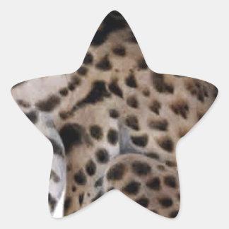 animal cat lynx primitive11 png star sticker