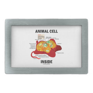Animal Cell Inside (Biology Eukaryotic Cell) Belt Buckle