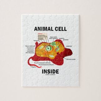 Animal Cell Inside (Biology Eukaryotic Cell) Jigsaw Puzzle