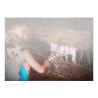 Animal - cerdo - cochinillos de alimentación anuncio