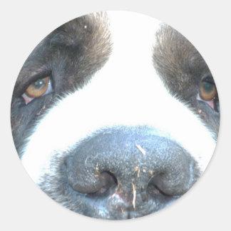 Animal Classic Round Sticker