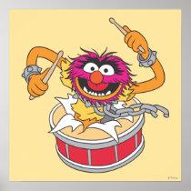 Animal Crashing Through Drums Poster