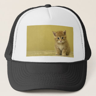 Animal - Curious Baby Kitten Trucker Hat