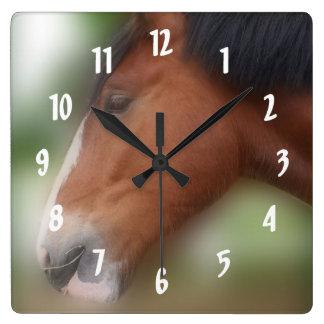Animal de la cara del caballo de proyecto del cond relojes de pared