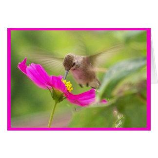 Animal de la fauna del pájaro del colibrí floral tarjeta de felicitación