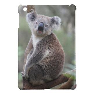 Animal de la koala