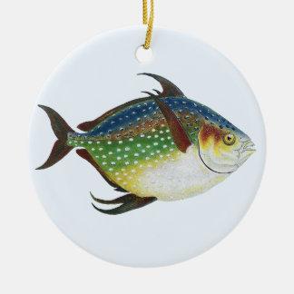 Animal de la vida marina del vintage pescado trop