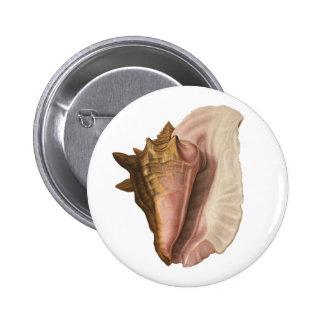 Animal de la vida marina del vintage, Seashell de Chapa Redonda 5 Cm