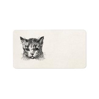Animal de los gatitos del gatito de los gatos de etiquetas de dirección