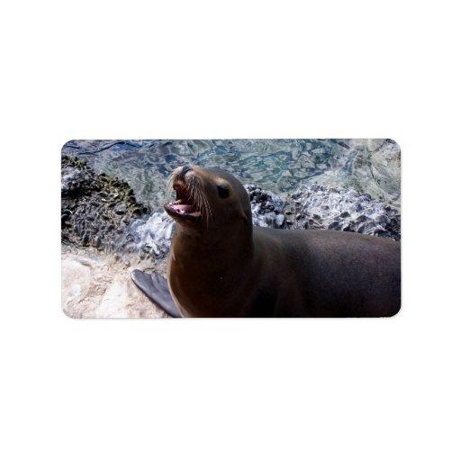 animal de mar lindo de la foto abierta de la boca  etiqueta de dirección
