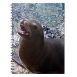 animal de mar lindo de la foto abierta de la boca  libretas
