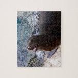 animal de mar lindo de la foto abierta de la boca  puzzle con fotos