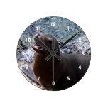 animal de mar lindo de la foto abierta de la boca  relojes de pared